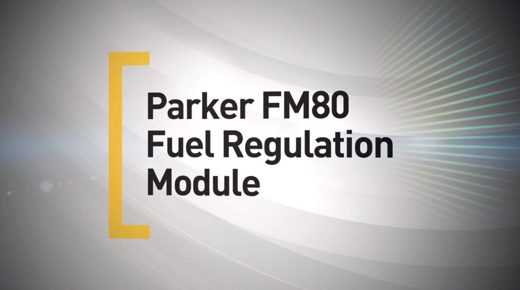 Parker Veriflo FM80 video